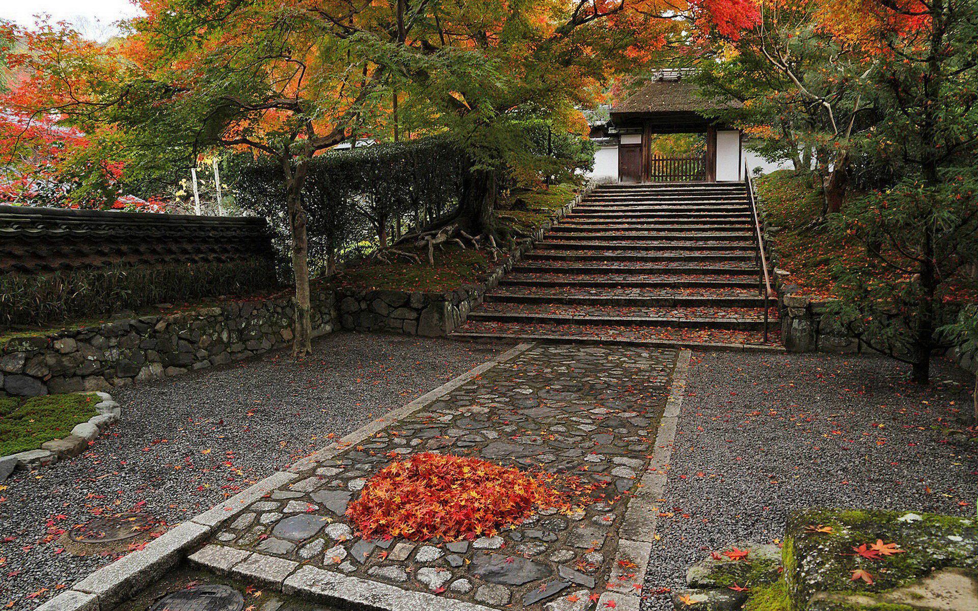 壁纸 日本 红叶/[心情贴图]红叶/庭院观[复制链接]...