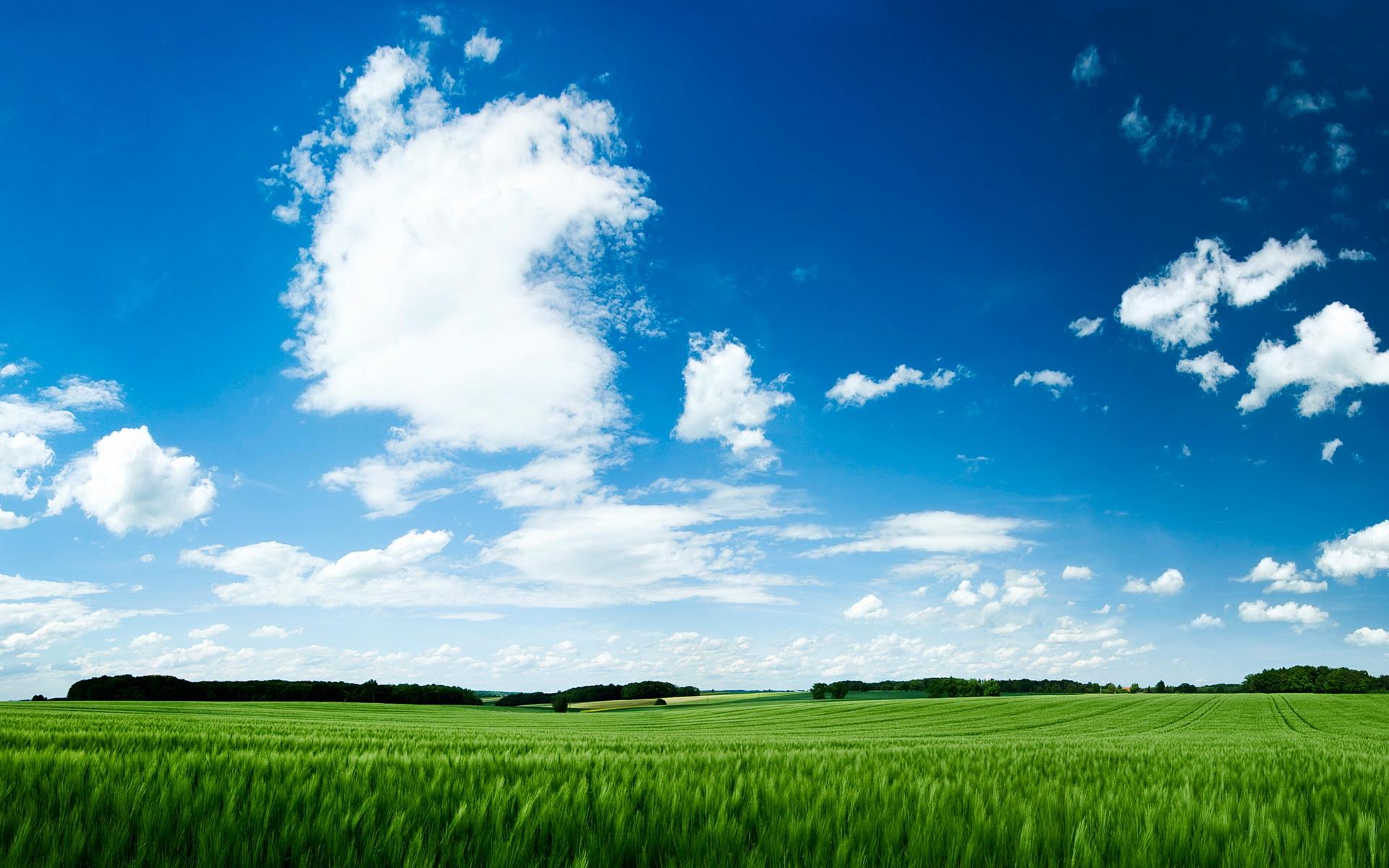 宽屏风景-绿色环保05(1920x1200)壁纸 - 桌面壁纸