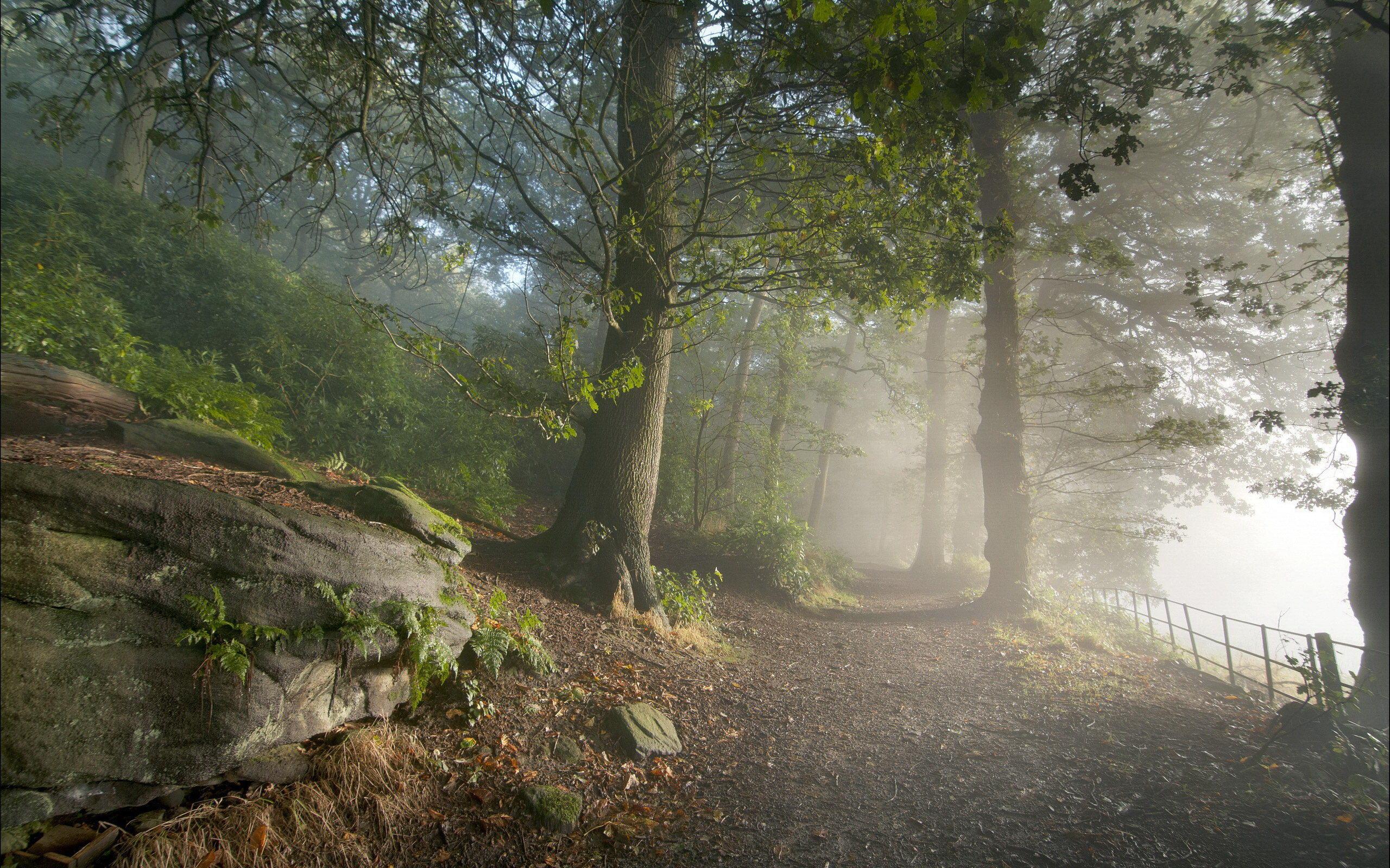 壁纸, 风景; 优美自然风景; 大千世界的优美风景电脑壁纸(2)